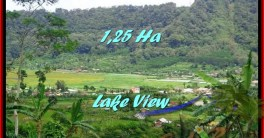 Exotic LAND SALE IN Tabanan Bedugul BALI TJTB188