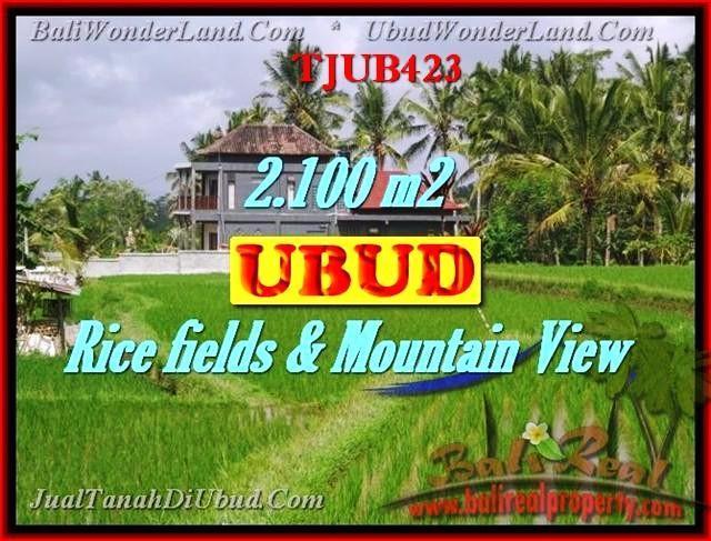 Beautiful 2,100 m2 LAND IN UBUD BALI FOR SALE TJUB423