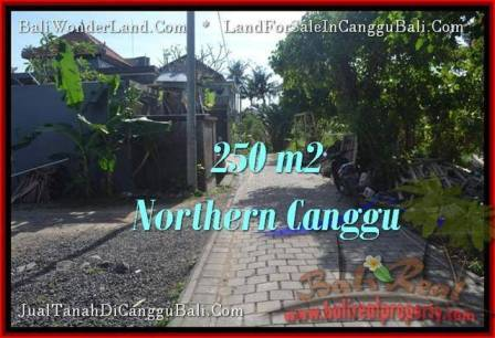 Affordable PROPERTY CANGGU 250 m2 LAND FOR SALE TJCG182