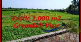 Affordable LAND IN Canggu Pererenan FOR SALE TJCG184