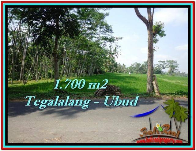 Magnificent PROPERTY 1,700 m2 LAND IN Ubud Tegalalang FOR SALE TJUB518