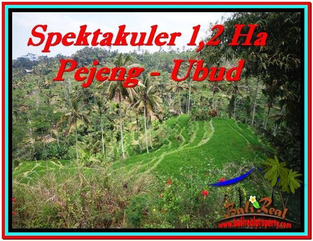 Ubud Tampak Siring BALI LAND FOR SALE TJUB520