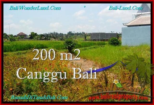Beautiful PROPERTY 200 m2 LAND FOR SALE IN Canggu Pererenan BALI TJCG191