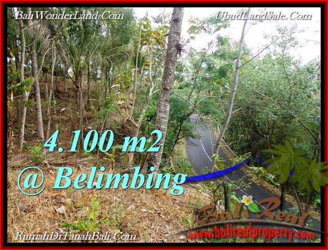 Beautiful 4,100 m2 LAND SALE IN TABANAN BALI TJTB218