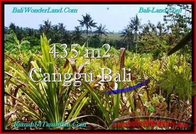Affordable PROPERTY 435 m2 LAND FOR SALE IN Canggu Pererenan TJCG196