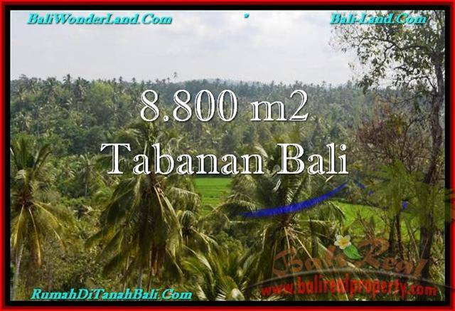 FOR SALE 8,800 m2 LAND IN TABANAN TJTB238