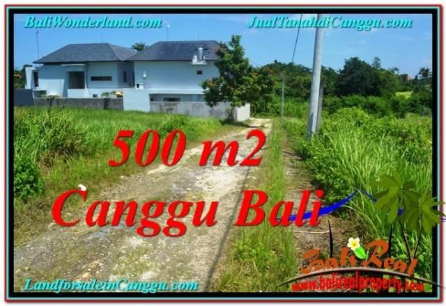 FOR SALE Magnificent 500 m2 LAND IN Canggu Brawa TJCG201