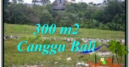 300 m2 LAND FOR SALE IN CANGGU TJCG205