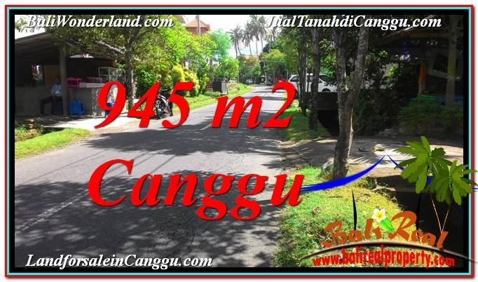Magnificent PROPERTY Canggu Pererenan BALI 945 m2 LAND FOR SALE TJCG210