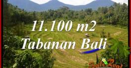 Exotic PROPERTY Tabanan Penebel BALI 11,100 m2 LAND FOR SALE TJTB320