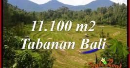FOR SALE Beautiful PROPERTY 11,100 m2 LAND IN Tabanan Penebel BALI TJTB320