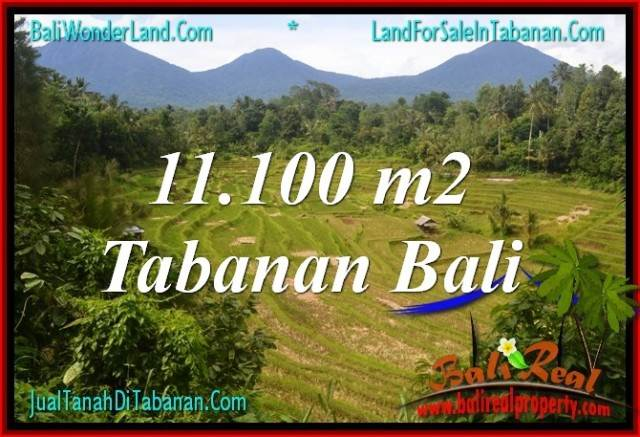 Affordable PROPERTY 11,100 m2 LAND FOR SALE IN TABANAN BALI TJTB320