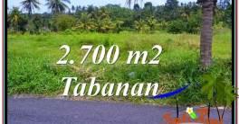 Beautiful PROPERTY Tabanan Kerambitan 2,700 m2 LAND FOR SALE TJTB301