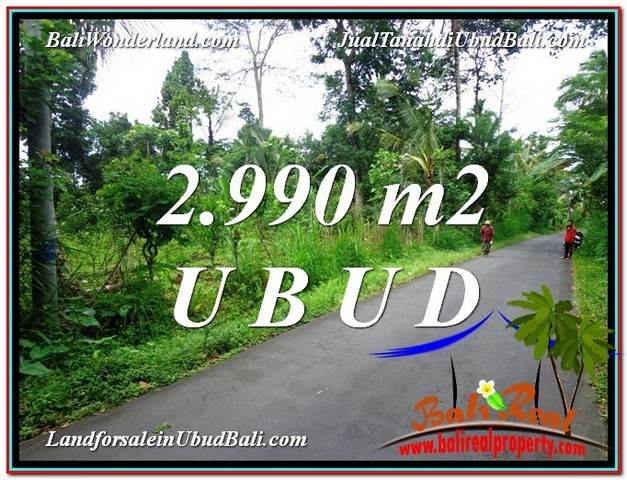 FOR SALE Magnificent PROPERTY LAND IN UBUD TJUB591