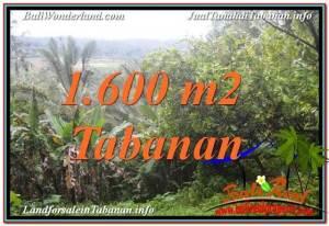 TABANAN BALI 1,600 m2 LAND FOR SALE TJTB348