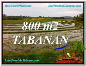 Beautiful PROPERTY LAND FOR SALE IN TABANAN TJTB324