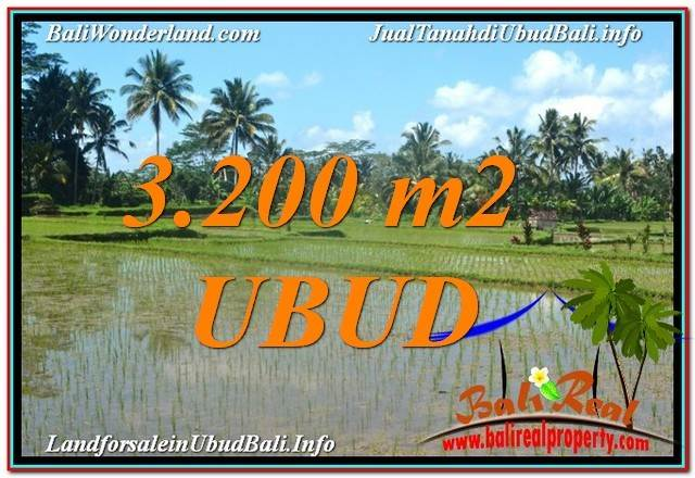 3,200 m2 LAND SALE IN UBUD TJUB628