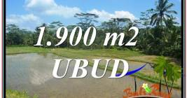 Magnificent LAND FOR SALE IN UBUD TJUB629