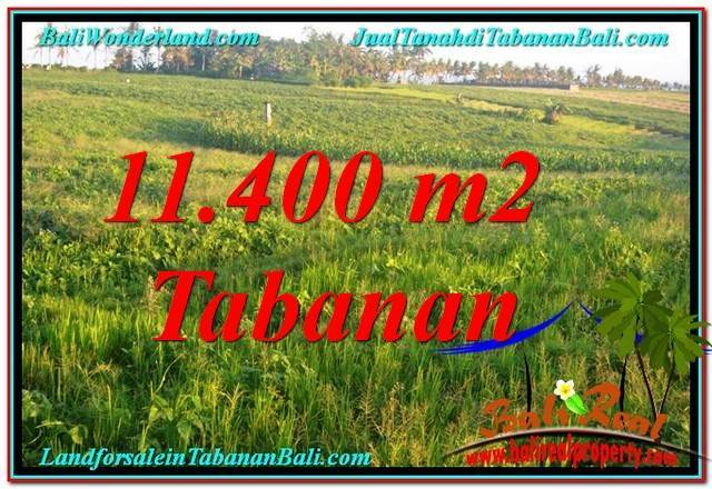 Exotic 11,400 m2 LAND FOR SALE IN TABANAN TJTB339