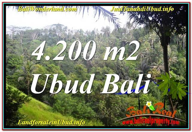 FOR SALE Exotic PROPERTY 4,200 m2 LAND IN Sentral / Ubud Center BALI