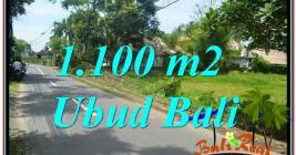 FOR SALE Magnificent 1,100 m2 LAND IN UBUD BALI TJUB645