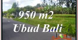 Magnificent 950 m2 LAND IN UBUD BALI FOR SALE TJUB648