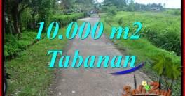 Exotic PROPERTY LAND IN Tabanan Selemadeg BALI FOR SALE TJTB354