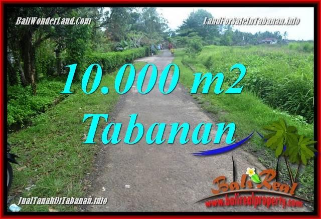 FOR SALE Beautiful PROPERTY LAND IN TABANAN BALI TJTB354