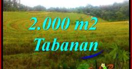 2,000 m2 LAND FOR SALE IN TABANAN BALI TJTB356