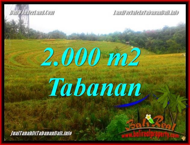 Exotic PROPERTY TABANAN LAND FOR SALE TJTB356