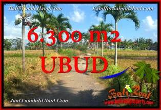 Affordable LAND IN UBUD BALI FOR SALE TJUB662