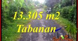Exotic PROPERTY 13,305 m2 LAND FOR SALE IN TABANAN Selemadeg TJTB367