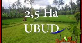 Exotic PROPERTY UBUD LAND FOR SALE TJUB655