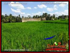 FOR SALE Exotic PROPERTY LAND IN Ubud Pejeng BALI TJUB656
