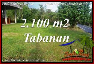 Cheap property 2,100 m2 LAND IN TABANAN FOR SALE TJTB393