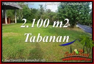 Beautiful 2,100 m2 LAND FOR SALE IN TABANAN BALI TJTB393