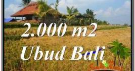 Affordable PROPERTY LAND SALE IN UBUD TJUB669