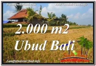 Exotic 2,000 m2 LAND SALE IN UBUD BALI TJUB669