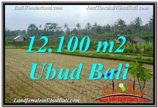 Exotic 12,100 m2 LAND SALE IN UBUD PAYANGAN TJUB677