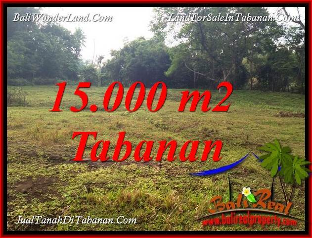 Beautiful TABANAN KOTA BALI 15,000 m2 LAND FOR SALE TJTB381
