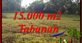 LAND FOR SALE IN TABANAN TJTB381