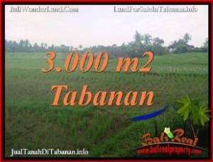 Beautiful 3,000 m2 LAND IN TABANAN FOR SALE TJTB389