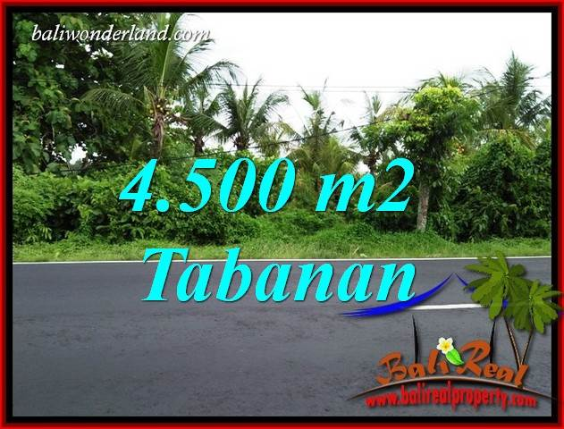 Exotic Tabanan Bali Land for sale TJTB395
