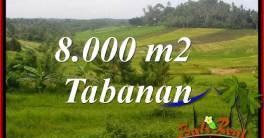 Exotic Property Land for sale in Tabanan Bali TJTB397