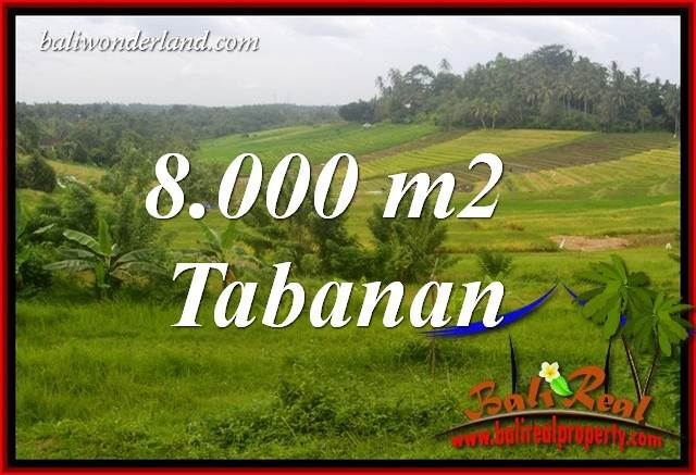 FOR sale Affordable Property 8,000 m2 Land in Tabanan Bali TJTB397