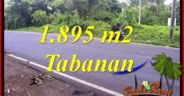 Affordable Property Land for sale in Tabanan Bali TJTB399