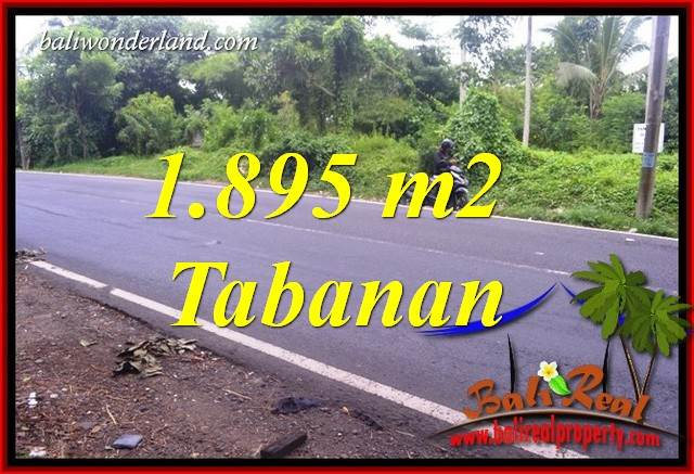Beautiful Property Tabanan Selemadeg 1,895 m2 Land for sale TJTB399