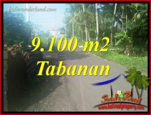 9,100 m2 Land for sale in Tabanan Bali TJTB407