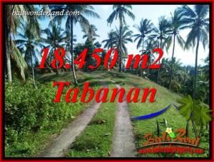 18,450 m2 Land in Tabanan Bali for sale TJTB410