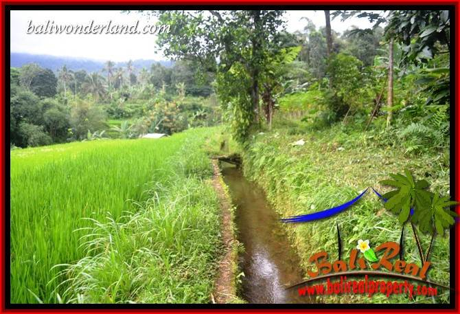 Bali Property investment, Land for sale in Tabanan, Land in Tabanan for SALE, Land for sale in Tabanan Bali, Property for sale in Tabanan, Property in Tabanan for sale
